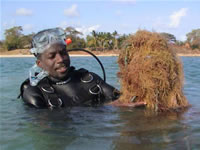 Coastal and Marine Management in Caribbean - BRT Tobago 2003